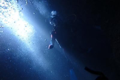 沖縄本島★ウミガメに遭遇!感動のダイビング③