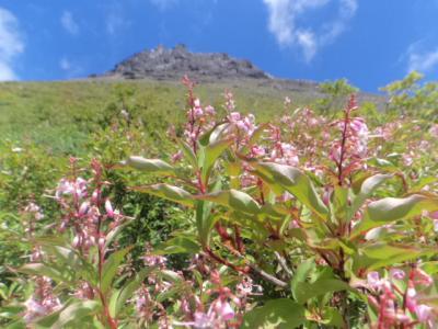 今日は那須岳ですが、頂上は踏まず外輪を巡る山歩きだそうです・②