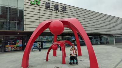 車椅子の妻と 第19弾 ダイヤモンド・プリンセス 石巻・函館・ウラジオストック・青森②