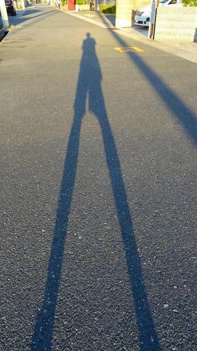 早朝散歩 立秋を過ぎ、久しぶりの長距離散歩で、瑞ヶ池公園を往復しました 下巻。