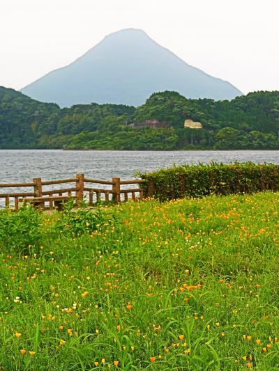 九州22 池田湖畔散歩 池田湖パラダイスで買物 ☆大うなぎを展示・屋久杉工芸も