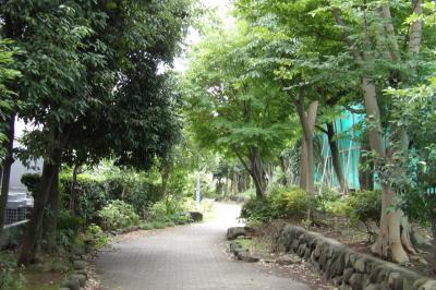金沢八景の暗渠道