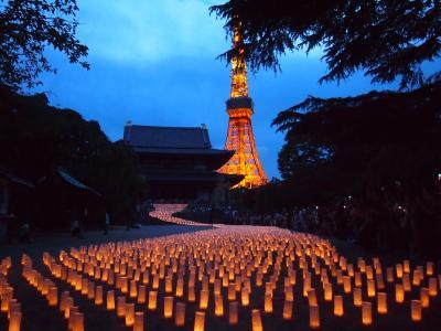 増上寺で「七夕祭り和紙キャンドルナイト」が行われることを知ったので行ってきました