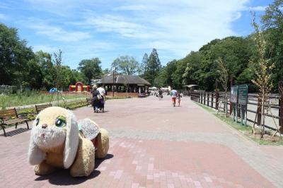 風太のいる千葉市動物公園へ
