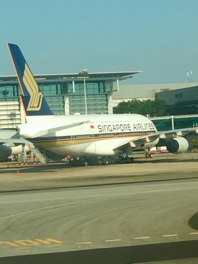 シンガポール航空で行く空の旅