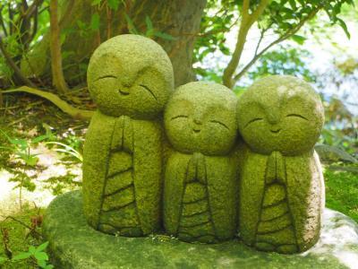 長谷寺 紫陽花の季節を外して 真夏の緑を堪能です! 久しぶりの観音様へ 鎌倉三十三観音巡り