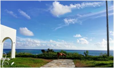 2018年サマーバケーション特典航空券で行く石垣島5泊6日 Vo.2  小浜島はとっても綺麗な島でした。