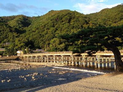 嵐山早朝ジョギング駆け抜ける
