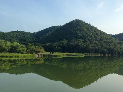 ジョギングで千代の古道北嵯峨めぐり