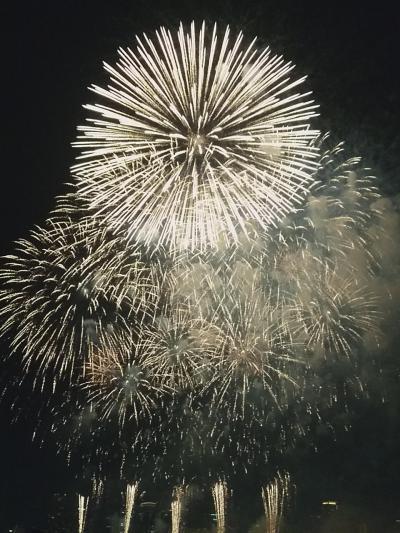 なにわ淀川花火大会を見に行きました。