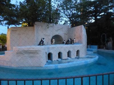 銀座松屋の「ウォルト・ディズニー・アーカイブス展」と上野の「真夏の夜の動物園」-2018.8-
