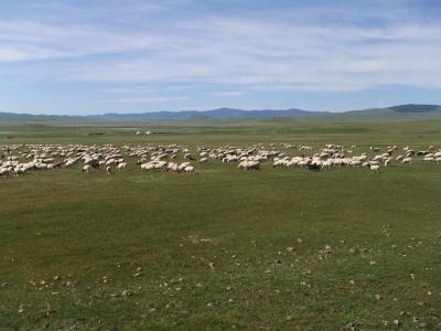 モンゴルの大草原、ボルガン山、博物館など(モンゴル旅行3日目)