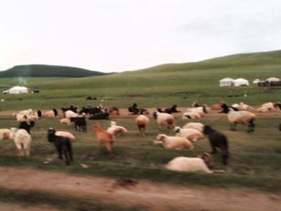 カラコルム観光(モンゴル旅行5日目)