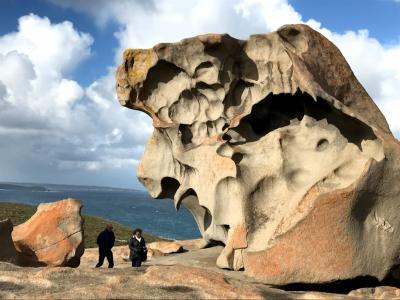 オーストラリア旅行:カンガルー島