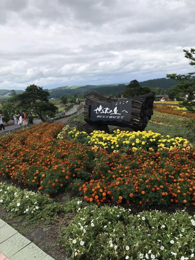 3世代 家族旅行in北海道☆ 2日目(上川・美瑛・富良野)