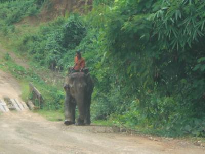 タイからミャンマーに、陸路にて入国し、ダーウェーまで、約300kmを走りました。