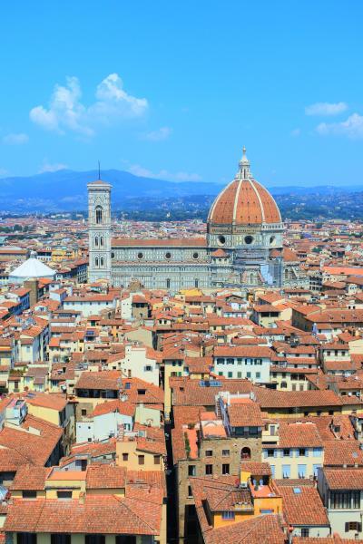 初めてのイタリア・悠久の歴史を抱く王道の3都市、列車の旅 4 ~フィレンツェ・ヴェッキオ宮、メディチ家礼拝堂編~