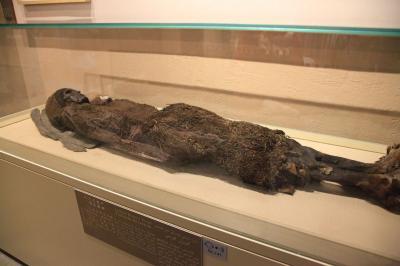 シルクロード新疆ウイグルへの旅・・・新疆ウイグル自治区博物館