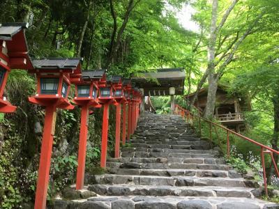 新緑の京都~2018 青もみじ  貴船-鞍馬編