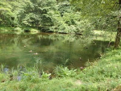 [2018年08月] 猛暑の夏休みは軽井沢、優雅にいかない子連れの避暑地