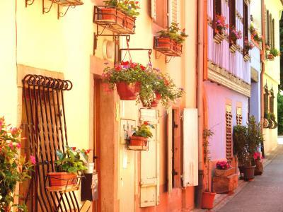 欲張り5ヶ国 美しい図書館と周辺のかわいい街めぐり 【9】 本格的にアルザス渡り歩き