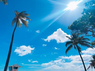 3年連続3回目ハワイ家族旅行