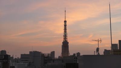 久しぶりの東京タワー(変なホテル)1日目