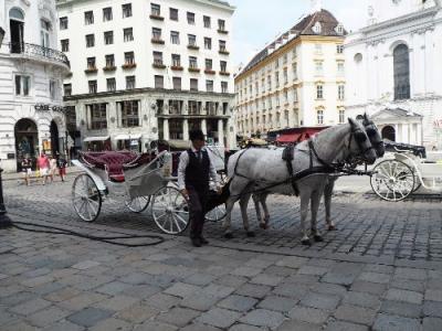 音楽とカフェの都ウィーン⑤楽友協会ホール内部ツアー・シュテファン寺院・ホーフブルク(王宮)