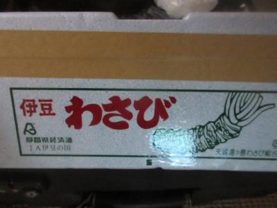 ブラジルで栽培予定のワサビを購入しました