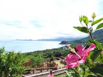 夏休みほとんど雨の石垣旅行☆一日目 玉取崎展望台 川平湾