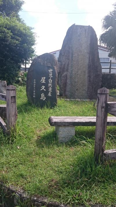 ぼっち旅:屋久島/鹿児島3泊4日①