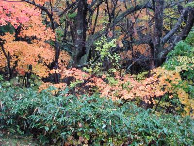 2017年10月 錦秋の東北 1日目 蔵王エコーラインドライブと蔵王温泉に宿泊