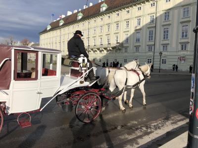 12泊14日ヨーロッパ。英語がダメな中年オヤジ初めての一人旅 #6 2017/12/28 ウィーン昼