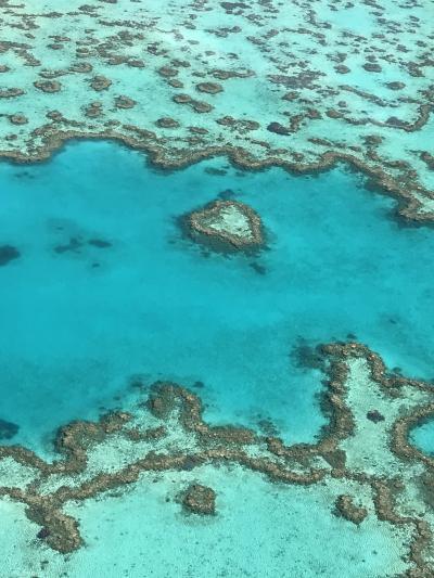 グレートバリアリーフに浮かぶ楽園ハミルトン島とシドニーを巡るオーストラリアの旅③ ハートリーフ&ホワイトヘブンビーチ