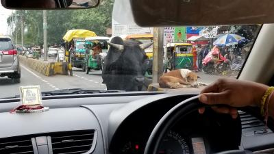 デリー⇔アグラ(タージ・マハル) 高速道路旅行記