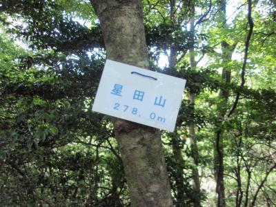 星田三山に登る スズメバチが行く手を阻む
