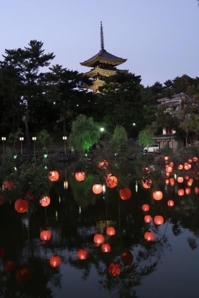 大神神社とちょこっと興福寺、猿沢池