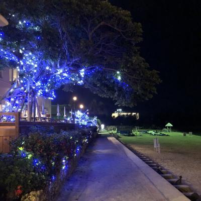 2018夏休み~沖縄③リザンシーパーク 谷茶ベイホテル~2日目・後半