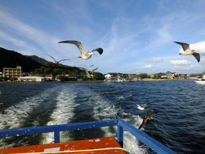 天橋立、舞鶴 カモメと遊ぶ旅