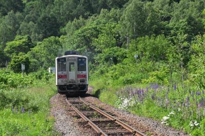 二つの歴史をもつ恵比島駅 ~石炭輸送に活躍した留萠鉄道と明日萌駅~(北海道)