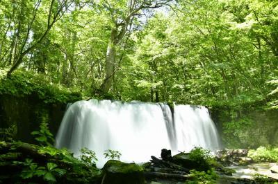 銚子大滝と森林