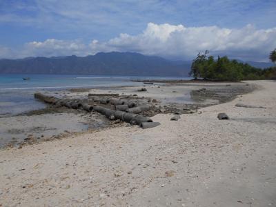 インドネシア・アロール島でスノーケリング(1)西チモールを経由してアロール島へ