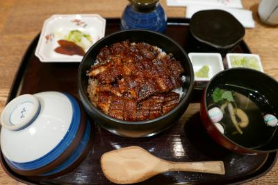 いつも通過ばかりの名古屋をじっくり観光と名古屋飯!