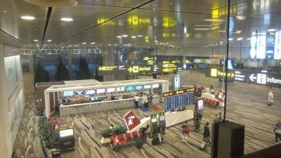 シンガポール航空B787-10ビジネスクラス深夜便で帰国