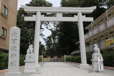 大國魂神社とケヤキ並木