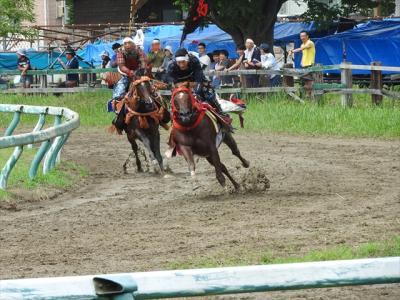 馬探し【福島(相馬野馬追祭り・Soma Nomaoi festival)編】