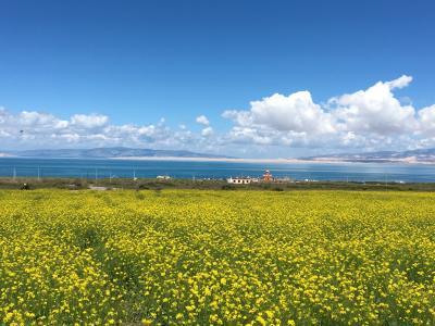 チベット旅行1日目:西寧・青海湖・チャカ塩湖