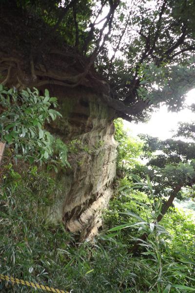 蛇居ヶ谷の大堀切-石切場跡か