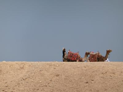 ナイル川クルーズとエジプト満喫8日間