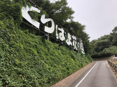 ポケモンGOサファリゾーンが当たったので横須賀行ってきました